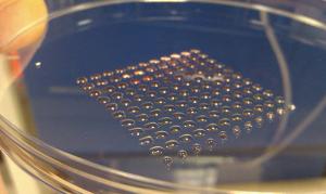3D organen printen